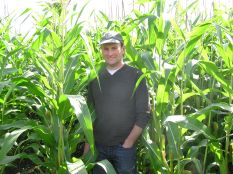 Due to the wet weather through the summer of 2012 surprisingly the maize crop towers above Andrew.